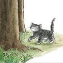 אוטוביוגרפיה חתולית