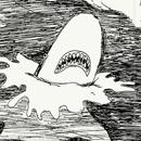 יומנה של לוכדת כרישים