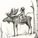 תמונת פרופיל - כנרת גילדר