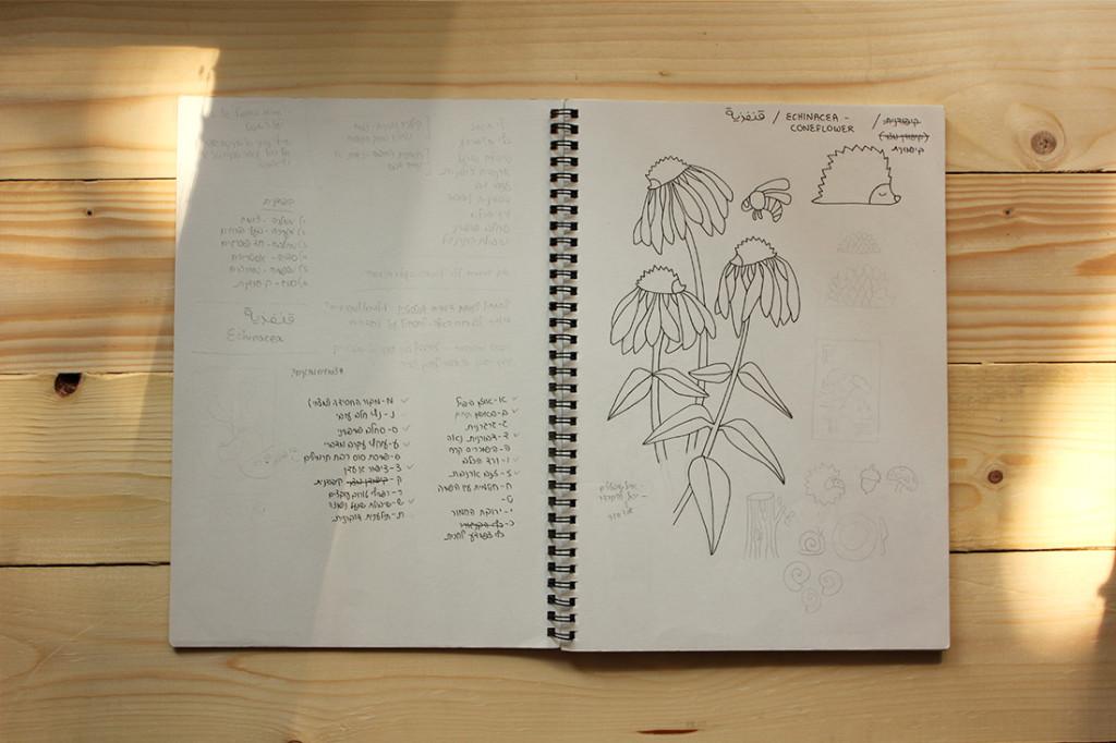 מתוך ספר הסקיצות - יצירת דימויים ראשוניים