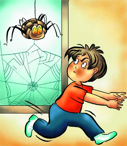 מתוך הגברת עכבישה