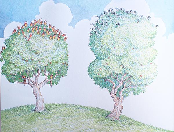 """מתוך """"תוכים על העץ"""""""